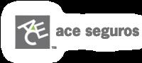 Logo de ACE SEGURADORA